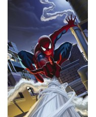 Painel decorativo Marvel Spiderman Rooftop