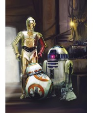 Painel decorativo Star Wars Three Droids