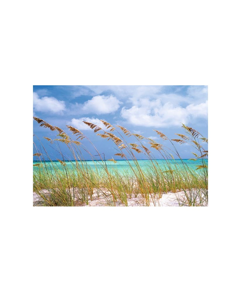 Painel decorativo Ocean Breeze