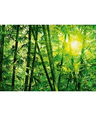 Painel BAMBOO FOREST