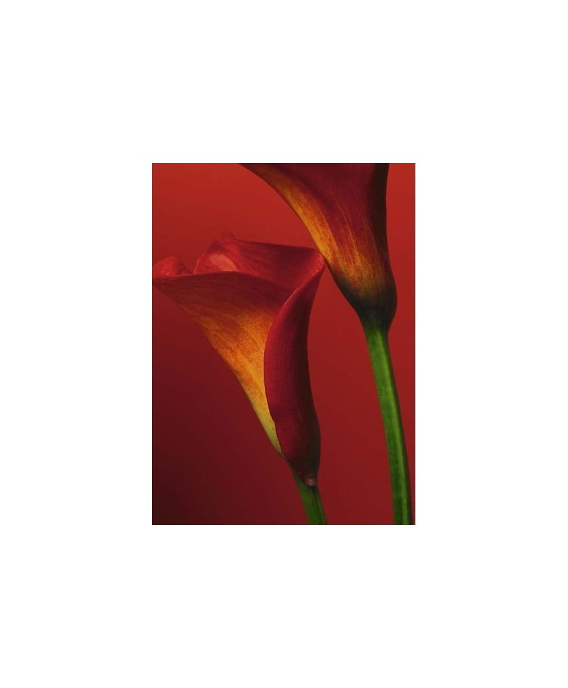 Painel decorativo ID-1076