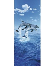 Painel THREE DOLPHINS