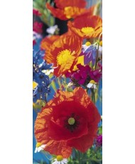 Painel RED POPPIES