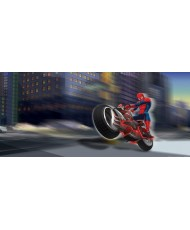 Painel decorativo SPIDERMAN ON BIKE