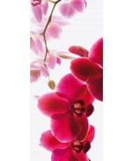 Painel decorativo ORCHID-001